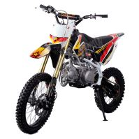 Pitbike MiniRocket Motors CRF110 14/12 125ccm