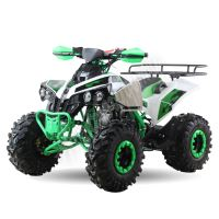 """Dětská čtyřtaktní čtyřkolka ATV Warrior MEGA bilo zelen 125ccm 3 rych. poloautomat 8"""" kola"""