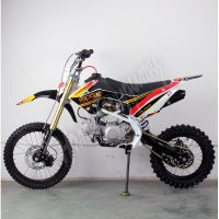 Pitbike MiniRocket Motors CRF110 125ccm 17/14